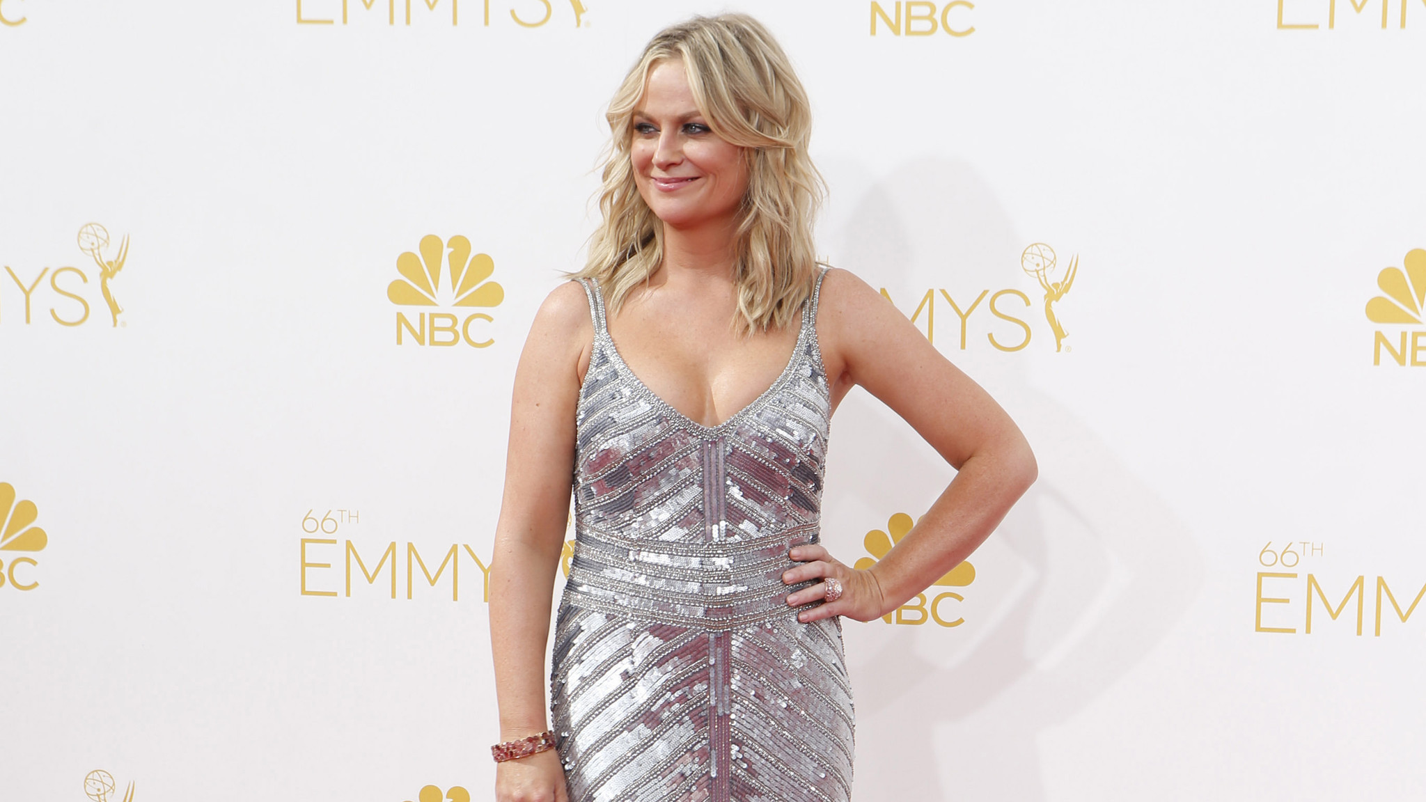 Amy Poehler Hot Bikini Pictures, Sexy Kissing Videos